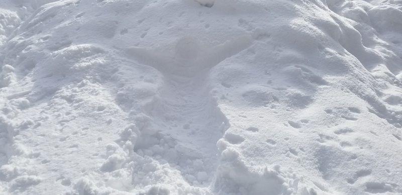 雪のベットにて