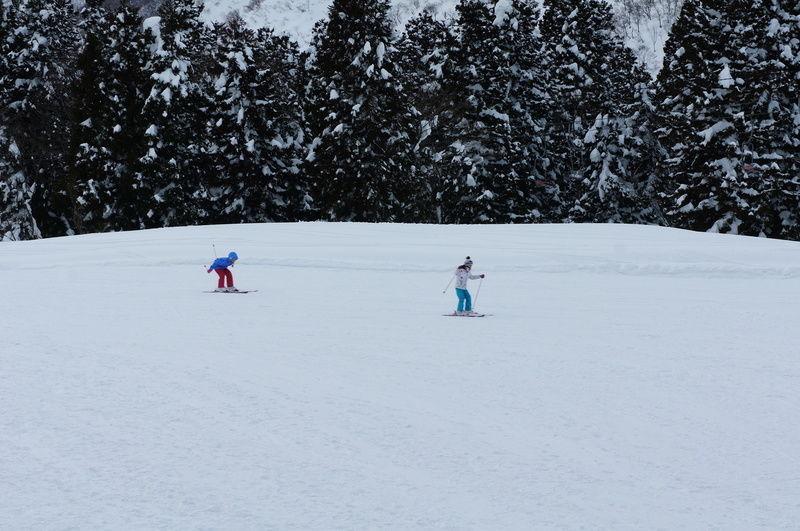 積雪が4m超え!
