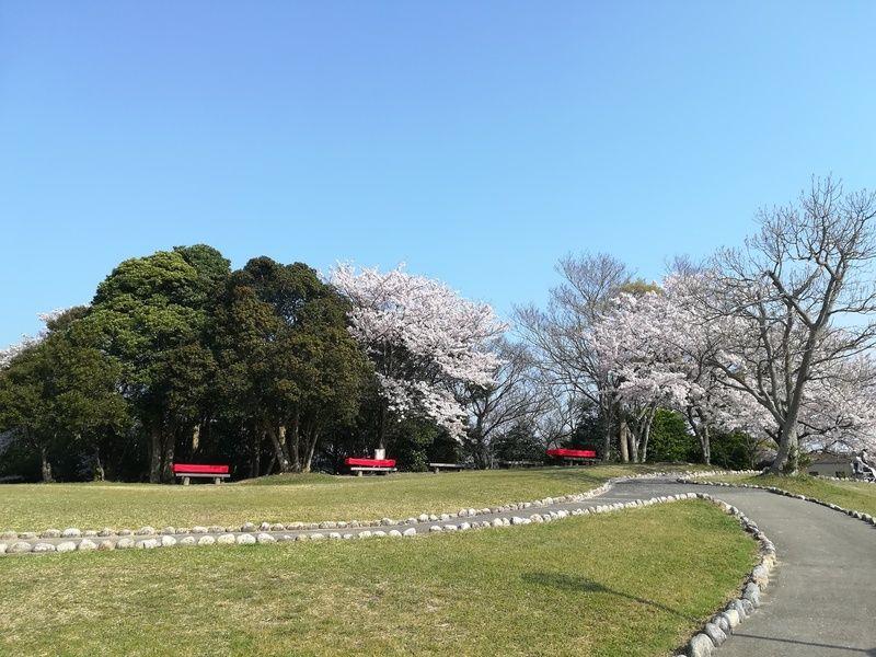 休暇村の桜開花予想