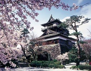 春はまるおか。ようよう白くなりゆく桜並木