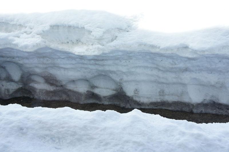 雪融けとともに、不思議な光景が・・