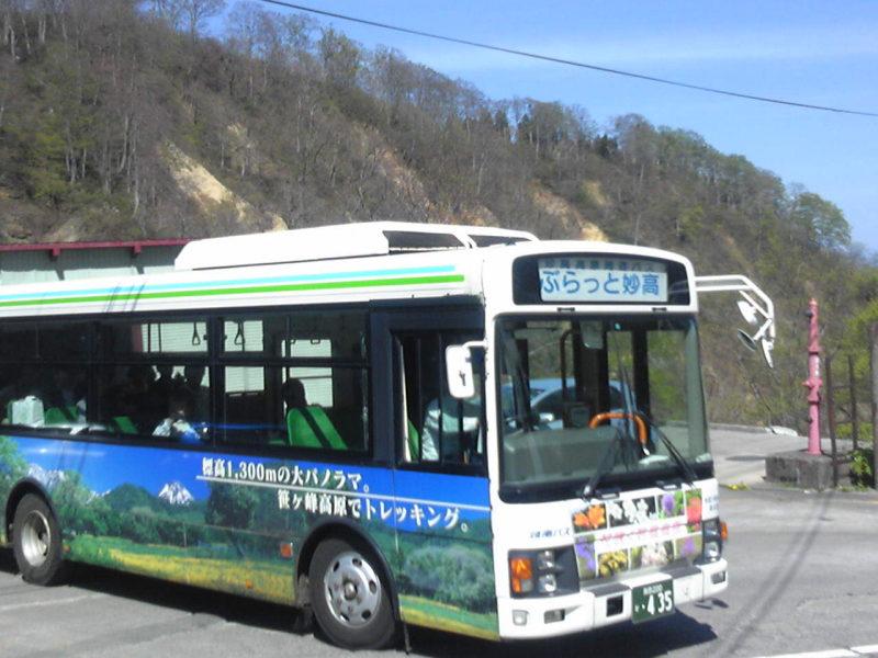 周遊バス今年も運行します!