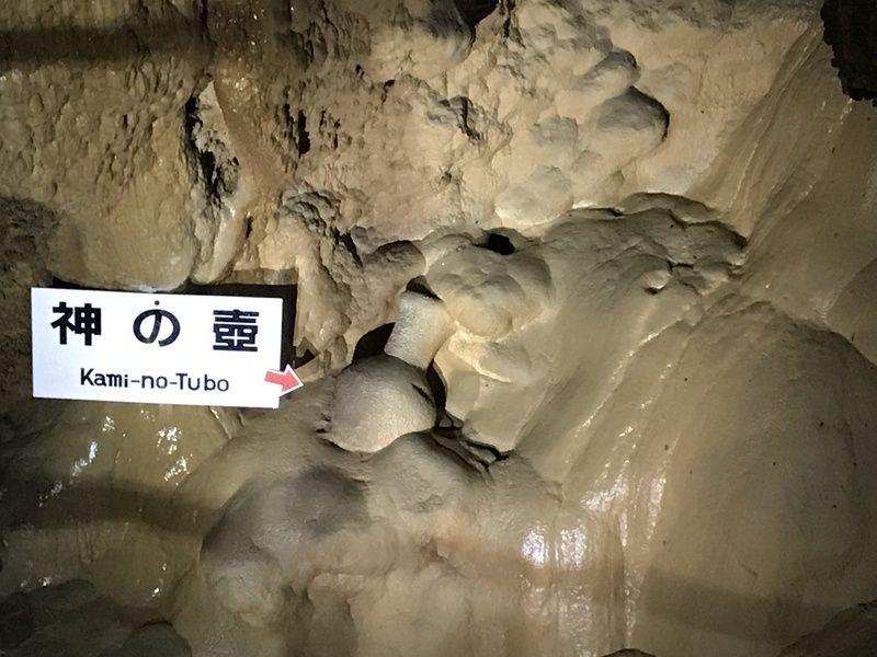 旅Qバスツアー 伊尾木洞と龍河洞を巡る旅に行ってきた 後編