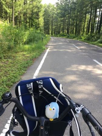 レンタル自転車で行く おすすめルート