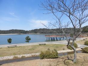 オススメのお散歩コース!初立池公園