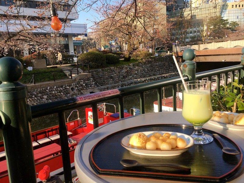 富山で花見をしながらカフェはいかが?