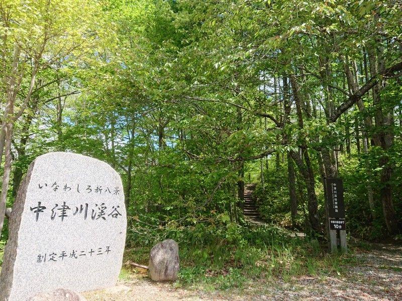こどもと一緒に「中津川渓谷」探勝路を歩こう! みさき母ちゃん