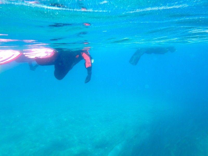 支笏湖の魅力を肌で感じよう