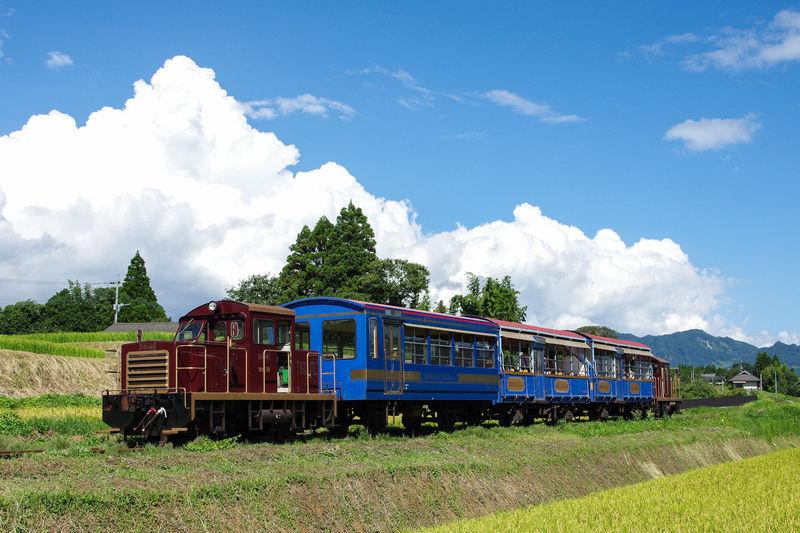 夏に乗りたい♪ 南阿蘇鉄道のトロッコ列車