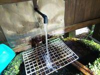 隠れた湧水スポット~洗川(そそがわ)水源~