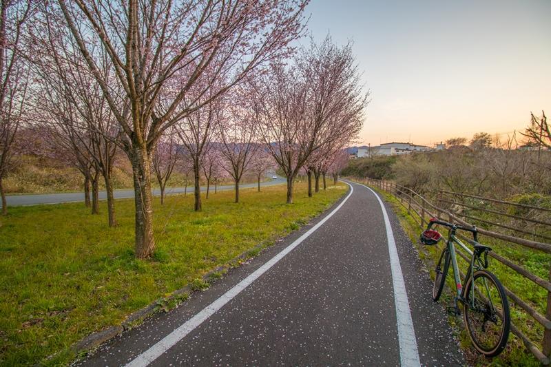 サイクリングロード♪ この道、ずうと、行けば♪
