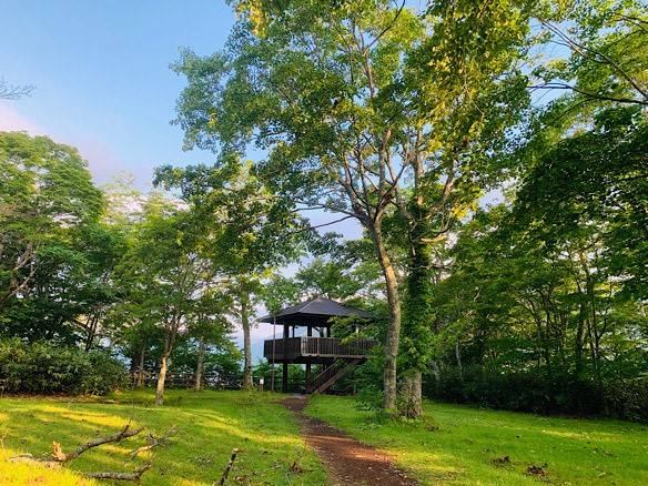 朝焼けと緑のお散歩はいかがですか