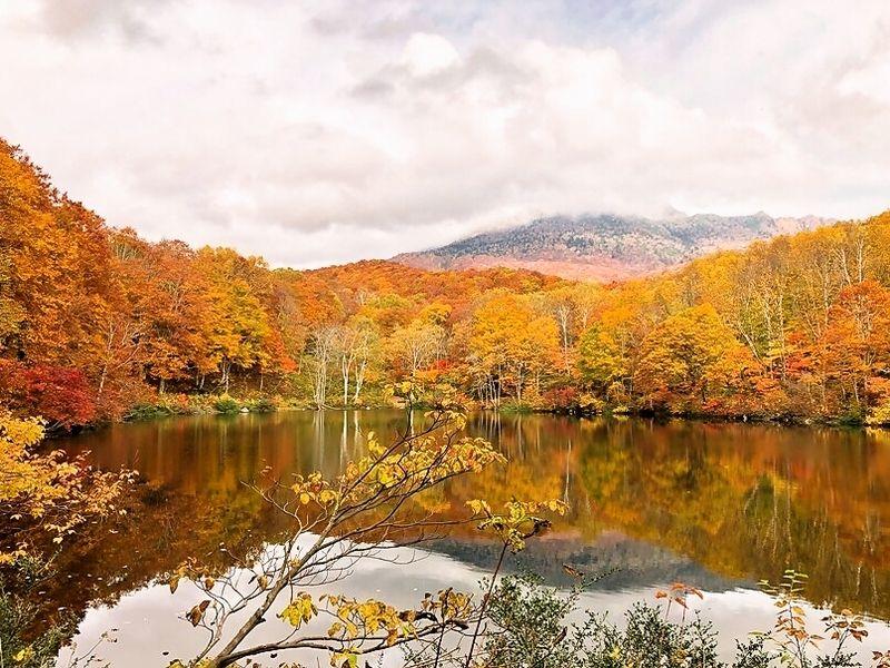 妙高でいち早く紅葉が始まる「笹ヶ峰」