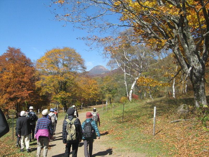 今年もやります!秋の笹ヶ峰歩き旅