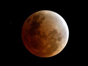 お月見を楽しむ・・・