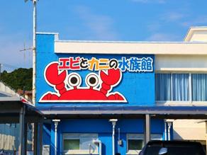 ★エビとカニの水族館★
