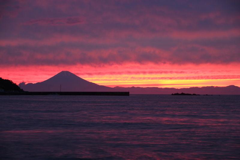 東京湾フェリーのダイヤ変更&ジェット船の運休につきまして