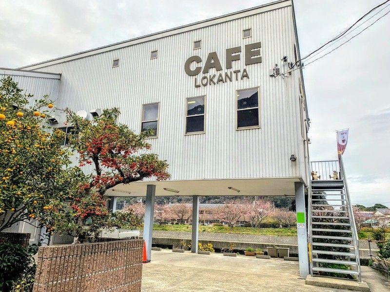 桜の見えるカフェ