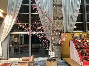 カニ桜と共に一足早く春が訪れました~🌸🌸