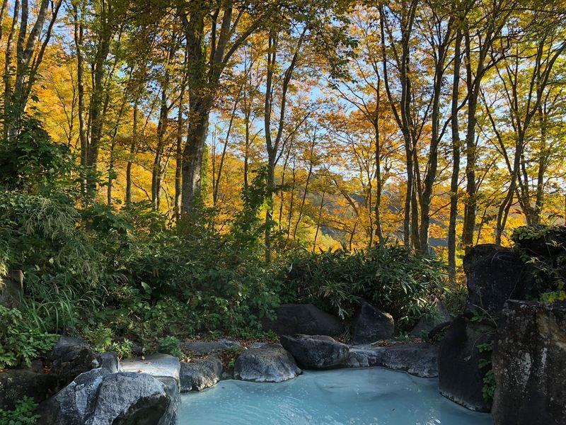 燕温泉 野天風呂「黄金の湯」がシーズンオープンいたしました。