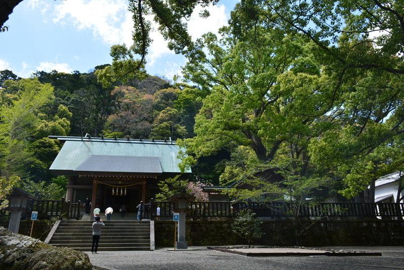 新緑に包まれたパワースポット「安房神社」
