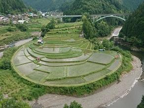 有田川町で自然を満喫できるおすすめスポットのご紹介