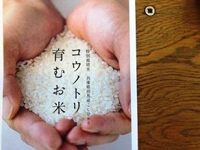 コウノトリ育むお米