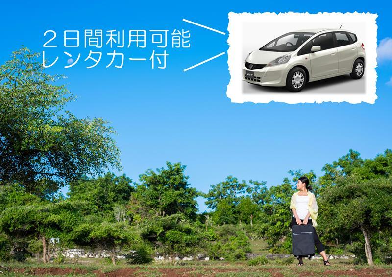 観光するならレンタカー付プランがお得!!