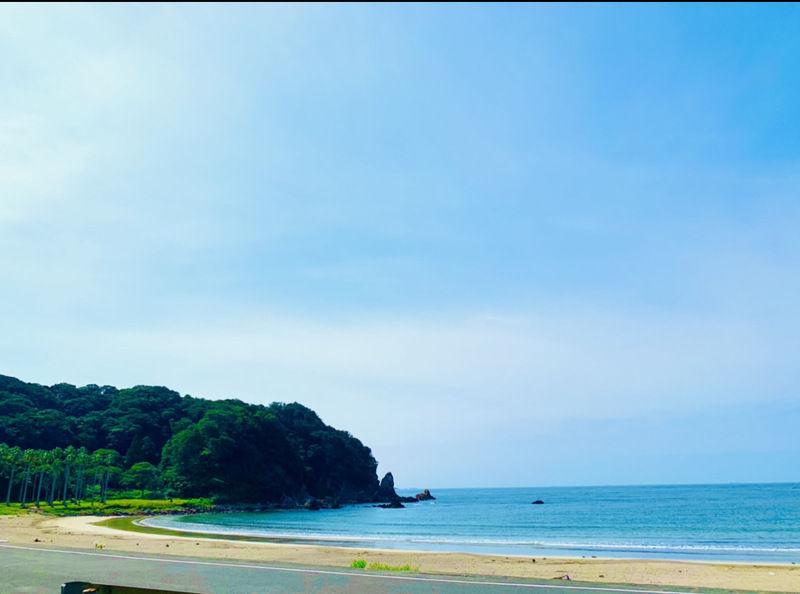 夏の伊豆で楽しみ♪♪♪