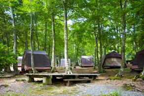 【やまがた夏旅】人気の手ぶらでキャンプが半額で利用可能‼