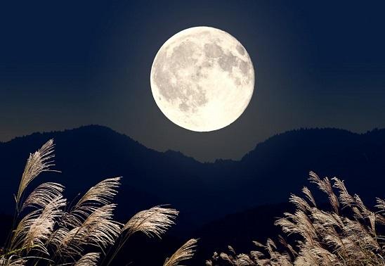 秋といえば~「中秋の名月」~