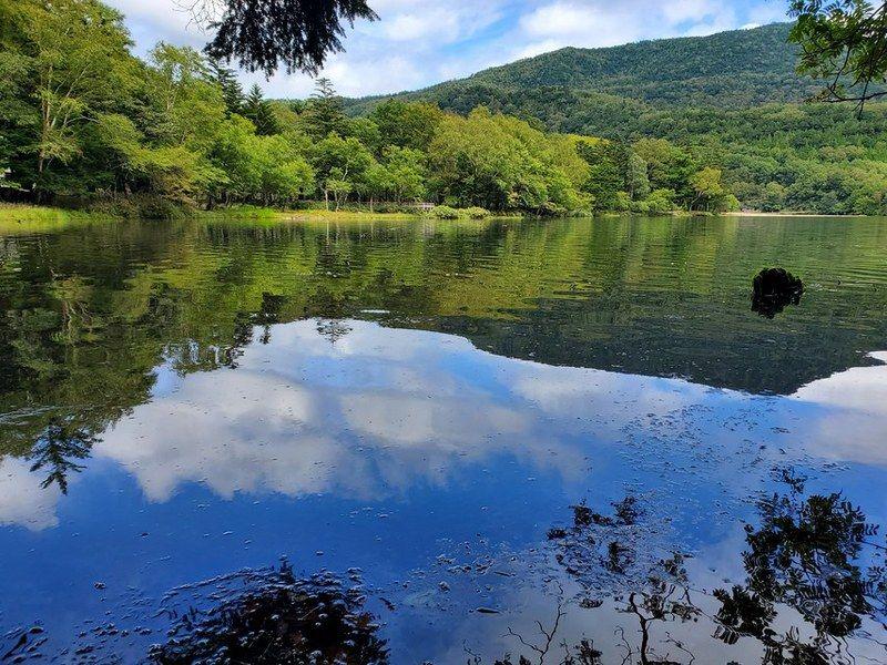 湯ノ湖の湧水