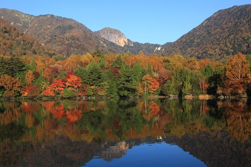 紅葉と周辺の観光情報