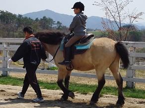 秋色に染まりゆく高原で乗馬体験♪