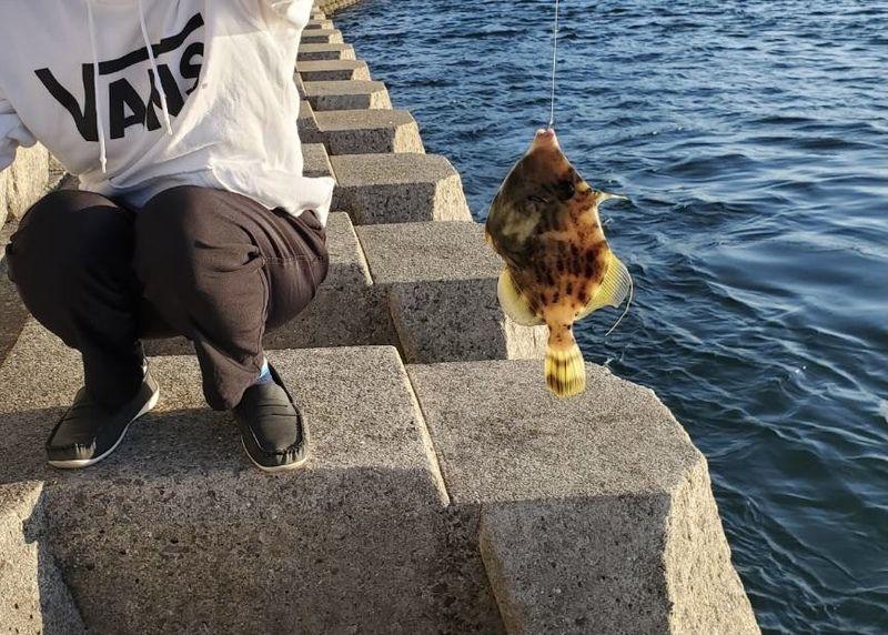 島でゆったりと釣りをしませんか?