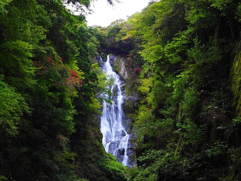 秋も訪れていただきたい神庭の滝(^^)/