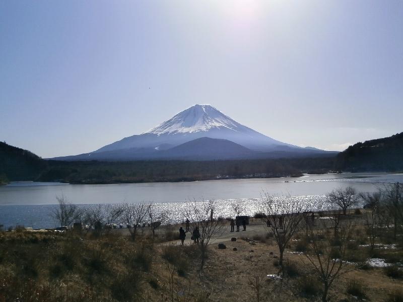 富士五湖で絶景めぐり日帰りバスツアー   トラベル …